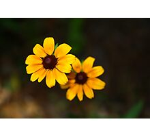 Yellow Lady Photographic Print