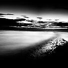 Dark shores by David  Howarth