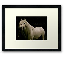 Majestic (part 2) Framed Print