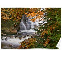 Fall In Fall Poster