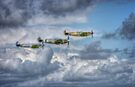 Battle of Britain Flypast at Goodwood by Nigel Bangert