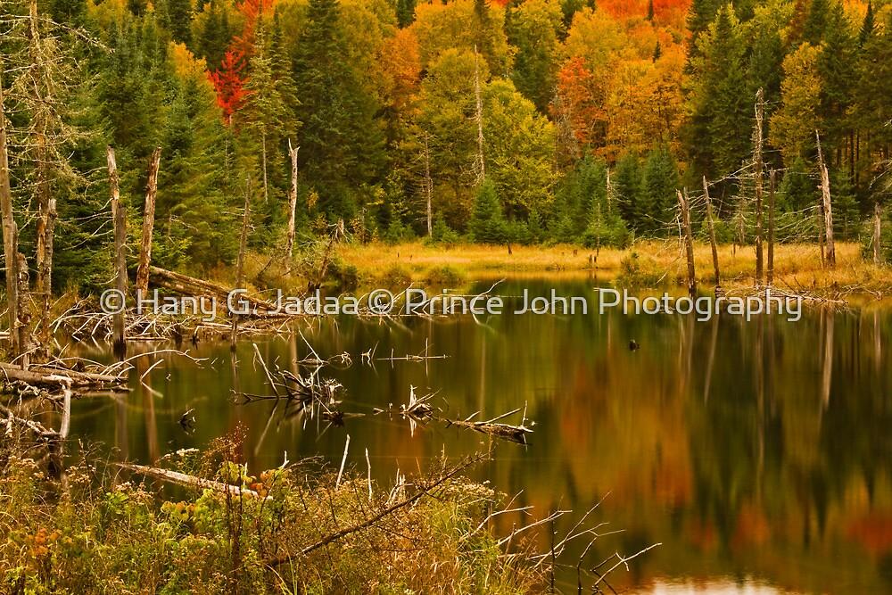 Intimate Reflections  © by © Hany G. Jadaa © Prince John Photography
