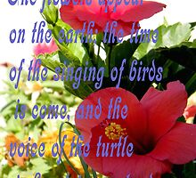 Song of Solomon 2:12 by R&PChristianDesign &Photography