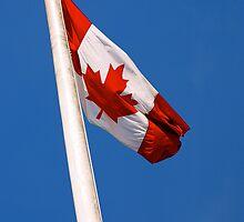 Canada Day Card by Rae Tucker