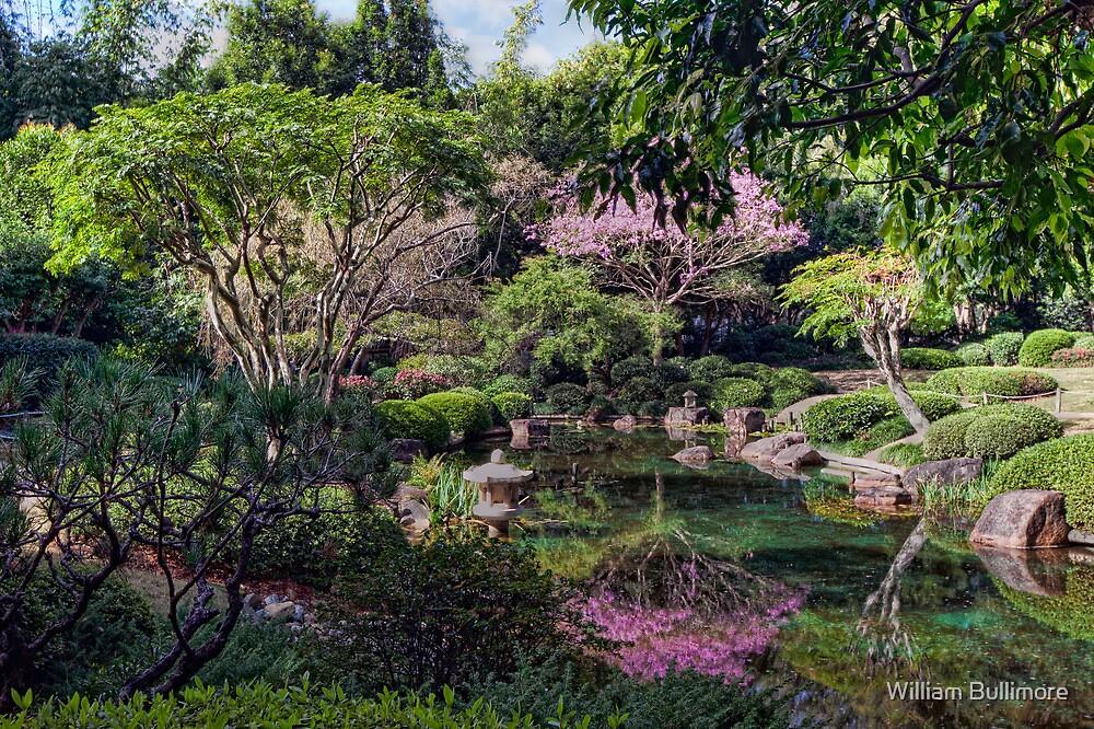 Mt Coot-tha Botanic Gardens by William Bullimore