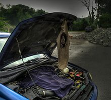 Drying out by Michael Gatch