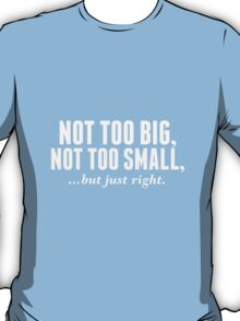 NOT TOO BIG, NOT TOO SMALL, BUT JUST RIGHT (RIGHT SIZE) T-Shirt