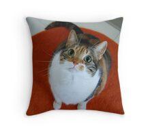 It's Lola! Throw Pillow
