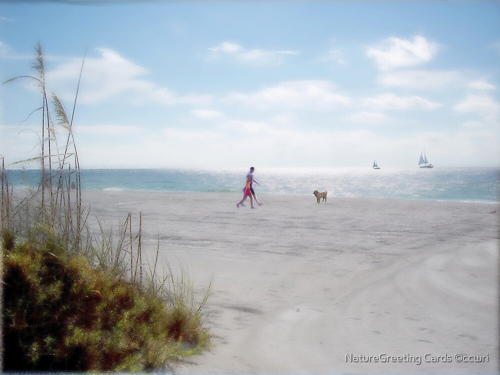 A Walk On The Beach by NatureGreeting Cards ©ccwri