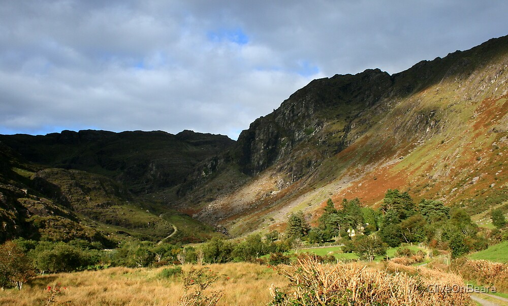 Colours of Glenlough by CliveOnBeara