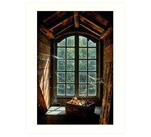 Old window in Bokrijk Art Print