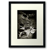 Contemplating Nature II Framed Print