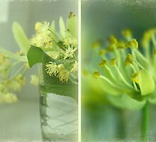 Spring in a vase by Caterpillar