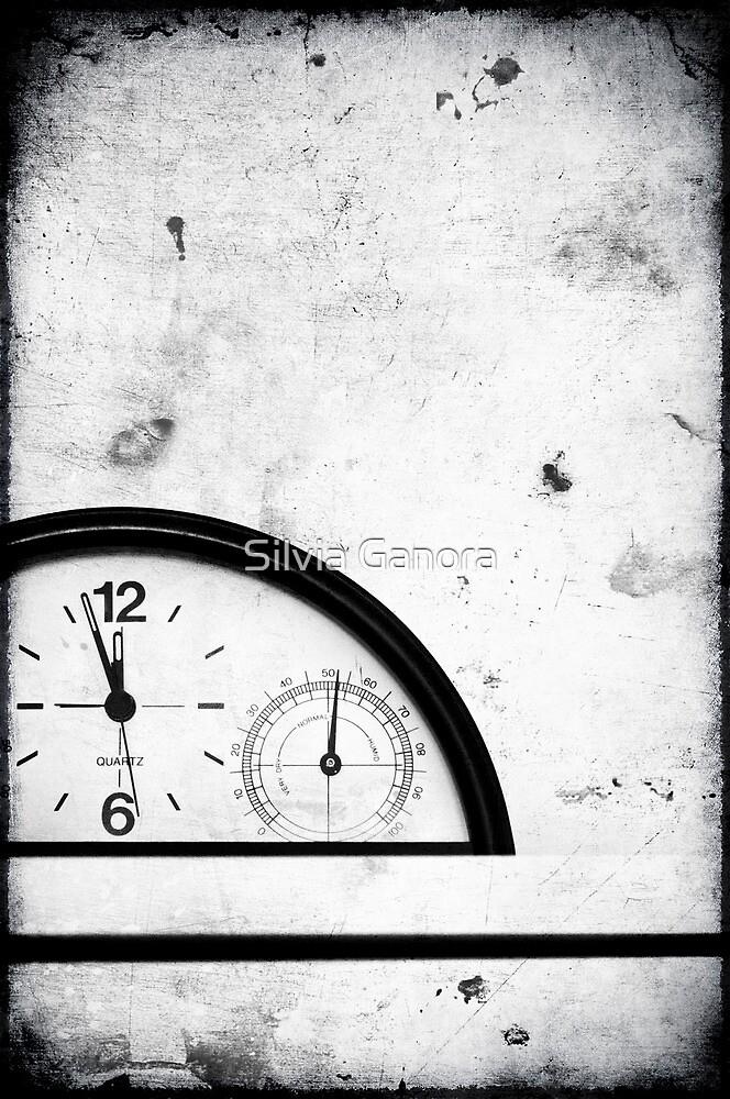 Almost twelve II by Silvia Ganora