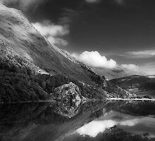Llyn Gwynant by Dorit Fuhg