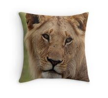 Out of Africa - Enjoying the Moment Throw Pillow