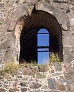 Ruin by Leon Heyns