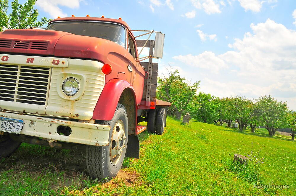 The truck in the vineyard by AskinImages