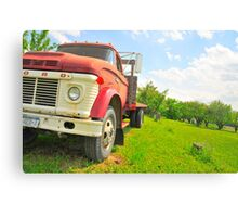 The truck in the vineyard Canvas Print
