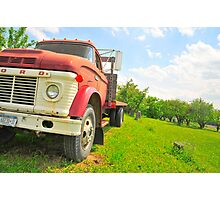 The truck in the vineyard Photographic Print