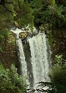 A Different Angle_Hopetoun Falls by Sharon Kavanagh