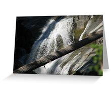 Bear Creek Falls I Greeting Card