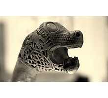 Viking beasts : Carved head 1 Photographic Print