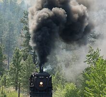 3716 Steam Engine by Jeff Ashworth & Pat DeLeenheer
