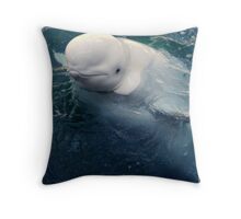 Curious beluga Throw Pillow
