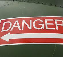 Danger! by vickysphotos
