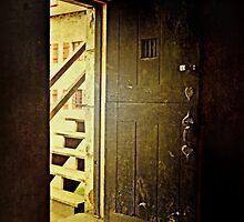 Doorway to the Past by Scott Mitchell