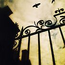 The Gate by Citizen