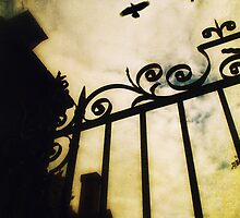The Gate by Nicola Smith