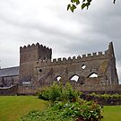 St. Mary's Church , Gowran by Martina Fagan