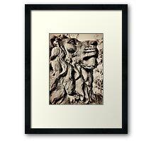 Salts lion Framed Print