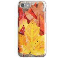 Colorful Leaves  iPhone Case/Skin