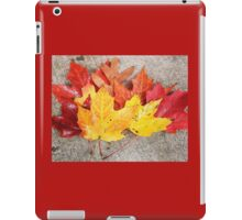 Colorful Leaves  iPad Case/Skin