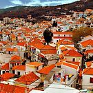 The  rooftops of Skiathos  by larry flewers