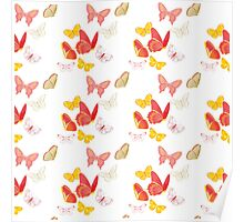 Nature insect pattern butterflies Poster