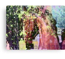 Horse Memories Canvas Print