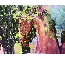 Horse Memories Photographic Print