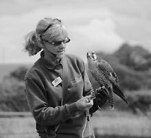 a falcons keeper B&W by yampy