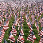 Boston Memorial Day by Michelle Callahan