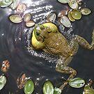 Bullfrog by Michelle Callahan