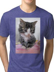 Itty Bitty Cutie Kitty Tri-blend T-Shirt