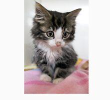 Itty Bitty Cutie Kitty Unisex T-Shirt