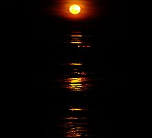 Stairway to the Moon, Broome, WA by Julia Harwood