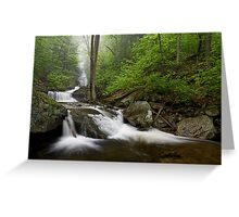 Below Ozone Falls Greeting Card
