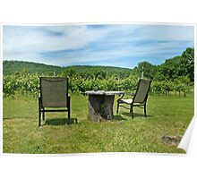 Relaxing in the vineyards Poster