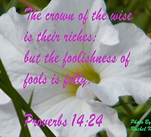 Proverbs 14:24 by R&PChristianDesign &Photography